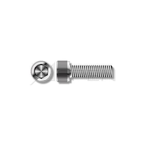 M5 X 100mm DIN 95 Wood Screws Oval Slot A2 Stainless 200 pcs