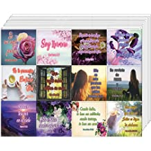 Individual Small Size 2.1 x 2 Inches 20 x 12pcs Righteousness /& Gods Rewards Great Variety Colorful Stickers Waterproof 5 Sheet NewEights Encouraging Religious Stickers - Total 240 pcs