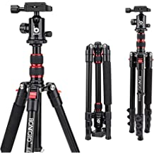 ZOMEI Q111 Lightweight Camera Tripod 55 Pan Head Stand with Phone Holder Mount /& Carry Bag for Gopro Tablet Smartphones Projector YouTube Live Chat DSLR EOS Canon Nikon Sony Samsung Black