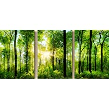 Pack of 3 Paint By Number Diy Oil Painting Home Decor Wall Pic Value Gift-Lush tree 16x20 Inch Wooden Framed